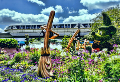 An Explosion of Color (Harry Rother) Tags: flower monorail