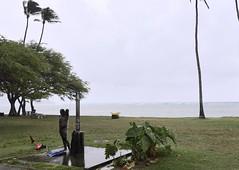 Spear fisherman washdown during a rain squall (D70) Tags: rain squall shower hawaii fisherman surf honolulu flippers spear washdown kuliouou