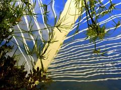 Reflejos del puente (camus agp) Tags: espaa agua puentes canoneos malaga reflejos estanques tirantes cyperus azulyblanco