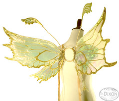 Nearea No.6 Medium Fairy Wings (RSDixonArt) Tags: halloween glitter butterfly costume wings cosplay magic fairy fantasy masquerade wearableart cellophane fairywings