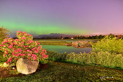 Aurora in Vancouver from last night (Lijuan Guo Photography ( Hollow Bamboo)) Tags: bridge mountain flower field club night vancouver creek court garden golf britishcolumbia meadow aurora midnight mapleridge northernlights borealis goldenears pittmeadows