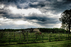 Before The Storm (Mark ~ JerseyStyle Photography) Tags: clouds monmouthcounty stormclouds 2016 markkrajnak jerseystylephotography creamridgenj creamridgewinery may2016