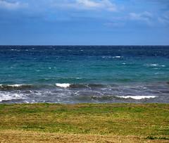 Mistral (Robyn Hooz) Tags: sea water grass mediterranean mediterraneo mare waves erba tuscany layers vivo vento onde mistral maestrale strati