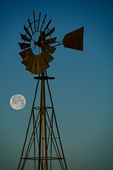 Good Morning! (Chamblin1) Tags: windmill country fullmoon meadowlark