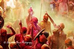 Barsana Nandgaon Lathmar Holi Low res (35 of 136) (Sanjukta Basu) Tags: holi festivalofcolour india lathmarholi barsana nandgaon radhakrishna colours