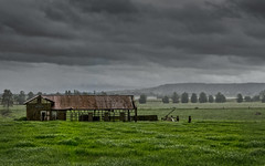 PYREE POUR DOWN (scatrd) Tags: afsnikkor24120mmf4gedvr nikon nikond800e mynikonlife australia southcoastnsw weather southcoast nsw d800e 2014 country grey pyree shed jasonbruth subject rain landscapephotography landscape brundee newsouthwales au