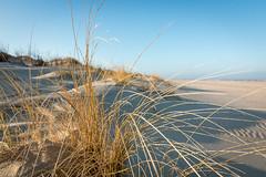 Norderney (tim.seegers) Tags: sea beach strand island deutschland see wasser norderney insel nordsee dnen