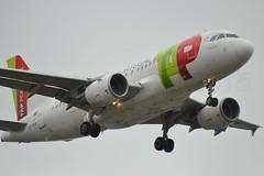 """""""Vieira da Silva"""" TAP Air Portugal CS-TTA Airbus A319-111 cn/750 @ LFPO 01-05-2015 (Nabil Molinari Photography) Tags: paris portugal airport air da airbus 1997 tap dd industrie current ff orly silva vieira 750 ory 12497 a319111 hres lfpo cstta 112297 495281 cfm565b5p parisorly viewdavyo"""