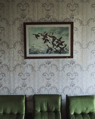 (Subversive Photography) Tags: wallpaper stilllife abandoned chair belgium ducks urbanexploration framing chateau derelict urbex 5x4 17mmtse danielbarter