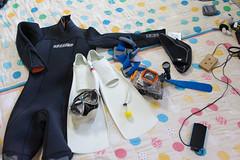 20150530-DS7_1646.jpg (d3_plus) Tags: sea sky fish japan tokyo scenery underwater diving daily snorkeling telephoto  tele  gadget tamron kanagawa   dailyphoto 28300mm  kawasaki  thesedays   28300  skindiving  tamron28300mm  tamronaf28300mmf3563     a061   telezoomlens d700 digitalgadget  tamronaf28300mmf3563xrdildasphericalif nikond700 nikonfxshowcase  a061n