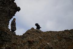 4mai_Thorbjorn_038 (Stefn H. Kristinsson) Tags: dog mountain dogs iceland spring hiking may ma vor hundur sland ganga fjallganga tamron2875mm grindavk hundar grindavik orbjrn nikond800 thornbjorn orbjarnarfell