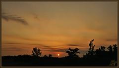 Fading Ember (WanaM3) Tags: park sun nature landscape texas sony houston vista goldenhour a700 sonya700 wanam3 elfrancoleepark