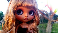 Sova (Sandra Coe) Tags: golden big eyes doll lashes ooak tan curls blonde blythe custom