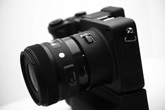 20160624_SIGMA sd Quattro + 30mm F1.4 DC HSM A013 (foxfoto_archives) Tags: camera white black art monochrome by lens photo blackwhite dc f14 sigma sd pro developed foveon quattro 30mm    sdq dp3 spp a013  632 hsm  dp3quattro dp3q spp6 spp63 sdquattro spp632