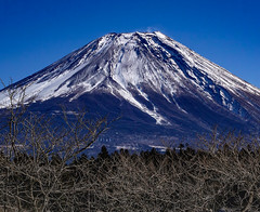 / Winter sunny Fuji (shinichiro*) Tags: 20160125sdim0328 2016 crazyshin sigmasd1merrill sd1m sigma18300mmf3563dcmacrooshsm fuji daylight  shizuoka japan january winter snow   candidate