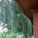 And Mo Rain
