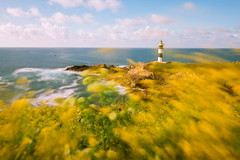 Luz diurna (Masterdreams) Tags: longexposure flowers lighthouse yellow landscape faro galicia ribadeo nightcolours islapancha longexpohunter