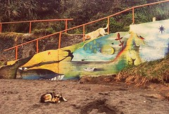 sueos de playa (Felipe Smides) Tags: lluvia mural playa sueos bosque sur perros animales viejo niebla valdivia mapuche territorio muralismo maa smides felipesmides