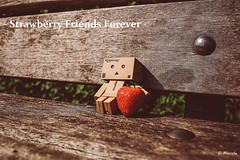 Danbo (marctriumph) Tags: friends japan bench japanese strawberry bank retro figure animated figurine strawberryfields aardbei danbo danboard
