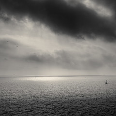 Where Light Is...I Go (sebistaen) Tags: sea cloud sun white black bird boat flickr wave sebistaen
