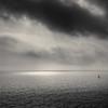 Where Light Is...I Go (sebistaen) Tags: sea cloud sun white black bird boat flickr wave sebistaen