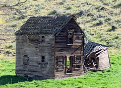 Long, long ago (bulldog008) Tags: wood old roof house building history abandoned home broken window grass architecture oregon farmhouse rural canon outside outdoors countryside wooden exterior decay farm empty branches board country hill rustic north central property structure powershot falling forgotten worn collapse weathered ago homestead aged residence residential deserted boarded thedalles dwelling dufur sx60