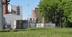 2011 Eindhoven 03010 (porochelt) Tags: nederland eindhoven noordbrabant strijp beukenlaan 625zwaanstraatw