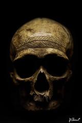 JPC_1063 (jp.clement12) Tags: paris tattoo museum de skull la robot tour mort cit eiffel montmartre coeur muse des pont notre dame fontaine sciences vuitton militaire villette sacr tte escaliers fondation