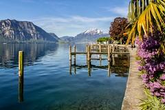 Lac des 4 cantons, Weggis, Switzerland (Vins 64) Tags: reflection reflections switzerland suisse swiss reflet reflect quai weggis