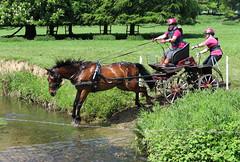 Chester Horse Driving Trials Erddig 12 IMG_7158 (rowchester) Tags: horse water driving carriage chester trials erddig