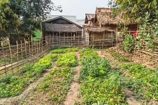 croisiere mekong - laos 37
