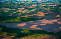 Steptoe Butte State Park, Washington (EdBob) Tags: steptoe steptoebutte steptoebuttestatepark palouse farm farmland hills wheat grass agriculture agricultural barn sunset green nature view viewpoint park state plow plowing plowed colorful colourful butte scenic scenery tourism washington washingtonstate washingtonstatetourism easternwashington colfax edmundlowephotography edmundlowe allmyphotographsare©copyrightedandallrightsreservednoneofthesephotosmaybereproducedandorusedinanyformofpublicationprintortheinternetwithoutmywrittenpermission wwwedmundlowephotocom