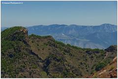 DSC_0357 (tonydg57) Tags: del torre campania napoli vesuvio vulcano pompei ercolano greco