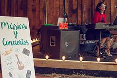 Verdeando Fest Gijón Museo del Pueblo de Asturias Música en directo