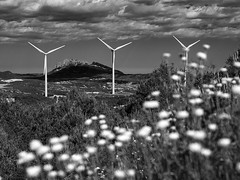 P6190054 (asferic) Tags: catalonia bn windpower rubi eolic