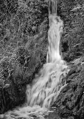 Steep Waterfall (sussexscorpio) Tags: blackandwhite monochrome mono canon 60d water waterfall petersfield hampshire steep outdoor longexposure