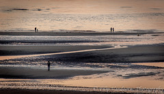 on the beach ... (filipmije) Tags: sea sun beach coast sand shore plage scenicsnotjustlandscapes