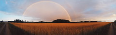Rainbow (ewitsoe) Tags: summer panorama sun beautiful sunshine mobile clouds landscape evening rainbow samsung poland wlodawa easternpoland vsco ewitsoe