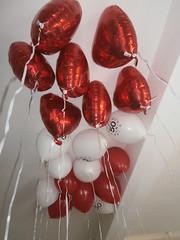 Kunst oder Ballons 6 (Thorte Berlin) Tags: red white berlin rot art germany balloons deutschland kunst ballon balloon helium strippen weis ballongas kunstoderballons strippenwald