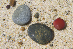 Sea Tumbled Stones in the Sunshine (brucetopher) Tags: rock rocks pebble pebbles shiny wet shine sand rubble tumble tumbled beach palette colorpalette inspire inspirational beauty beautiful sparkle sparkly smooth smoothed natural nature red green maroon yellow beige grey gray