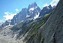 Mer de Glace (AmyEAnderson) Tags: merdeglace glacier mountains flowers cliff france europe rhonealps alps scenic snowcapped summit rockface montblanc