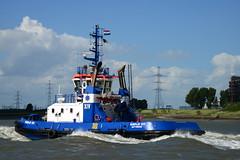 Fairplay XIV DST_4062 (larry_antwerp) Tags: antwerptowage fairplayxiv 9541708 tug sleepboot      antwerp antwerpen       port        belgium belgi          schip ship vessel        schelde