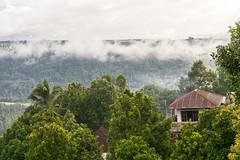 Bali, Indonesia (DitchTheMap) Tags: 2016 munduk seasia bali flickr indonesia banjar id