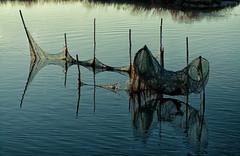 La rete (Agnolo) Tags: nikon d7100 liopiccolo laguna lagoon venezia venice isole acqua water tramonto sunset rete net pescatore pesca fishing