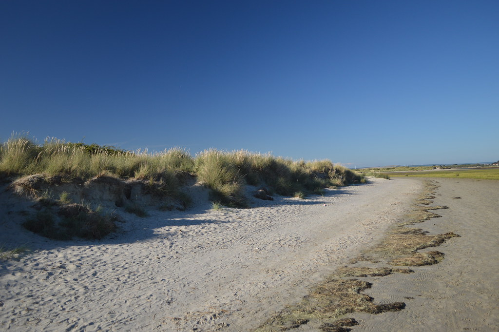 Best Beaches Southcoast Uk