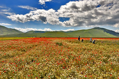 Family portrait - Castelluccio di Norcia (G.hostbuster (Gigi)) Tags: flowers people mountains perspective ghostbuster castellucciodinorcia gigi49
