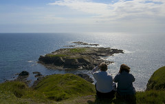 Whale Watchers (dangerousdavecarper) Tags: sea people irish man coast rocks watching isle manx niarbyl
