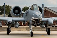 USAF A-10 Warthog (Rami Khanna-Prade) Tags: aviation jet airforce unitedstatesairforce lfi avgeek aviationphotography planephotography langleyairforcebase langleyfield avporn klfi langleyafb airshow airshows langleyairshow hamptonroads airpower apohr2016 apohr2016 airpoweratjble
