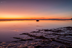 Long Reef sunrise (vito_ricapito) Tags: sunrise longreef northernbeaches vitoricapito