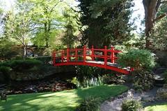 Japanese Gardens, Kildare (Philip McErlean) Tags: bridge ireland red gardens japanese kildare nationalstud